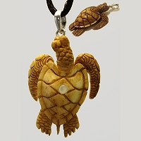 Carved Turtle Pendant Custom Photo Stanhope Peep